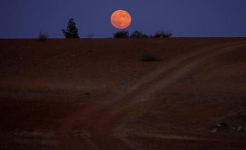 Una noche perfecta bajo la Luna