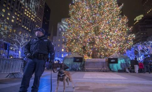 10 datos que quizá no sabías sobre el árbol navideño más famoso del mundo