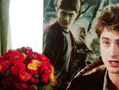Orejas / Harry Potter gif