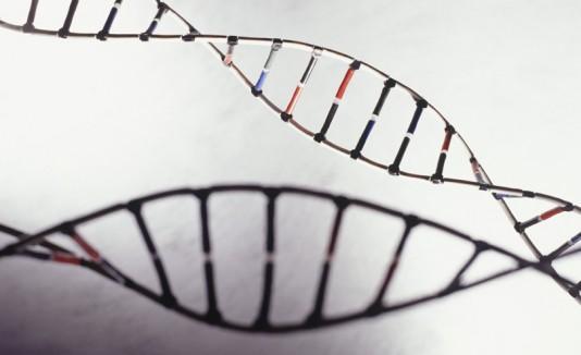 Hace 60 años descifraron el ADN