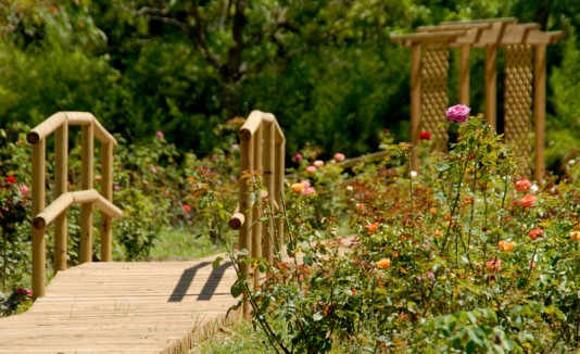 Arte en el jard n bot nico de caguas for Jardin botanico en sevilla