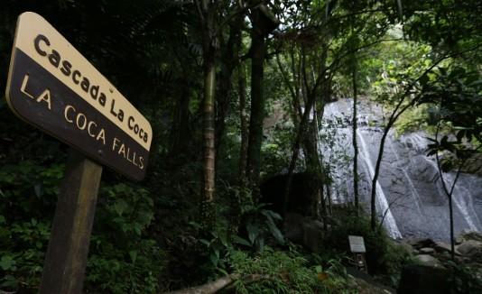 El Yunque  fue uno de los lugares afectados por el cierre.