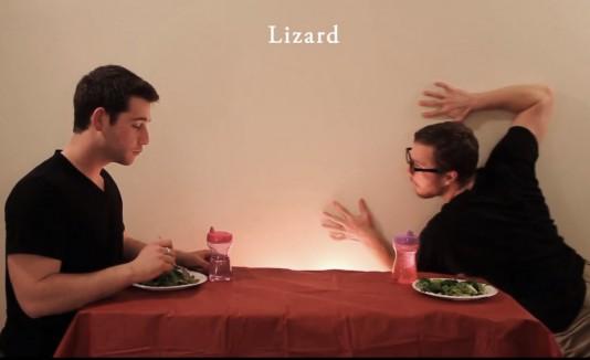 cómo comen los animales