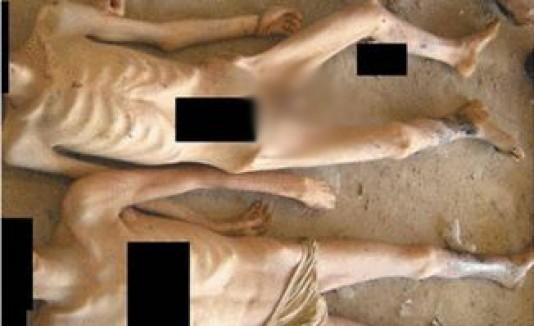 reporte siria