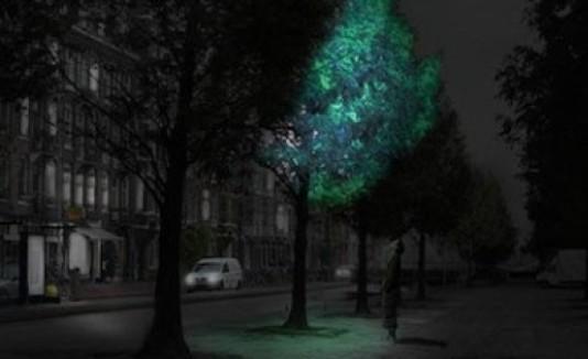 Árbol bioluminiscente