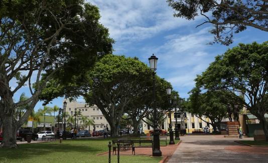 Plaza de Dorado