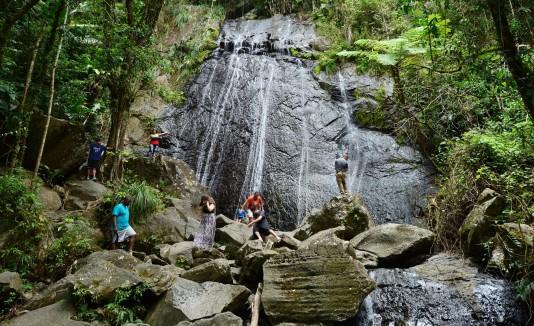 El Plan de Manejo de El Yunque servirá de guía para la conservación de la reserva y se revisará cada 15 años.