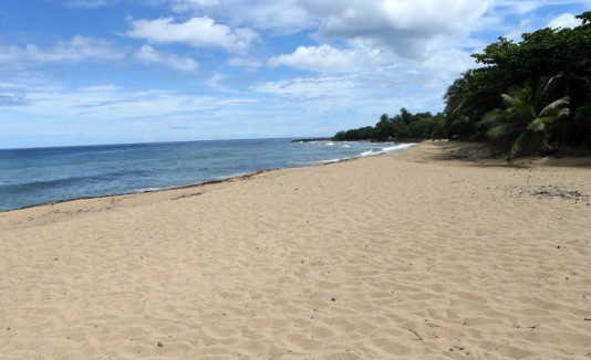 Playa en Rincón