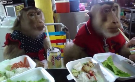 Monos refinados