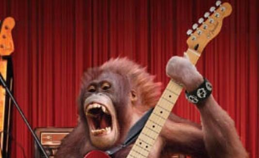 Publicidad de Hard Rock