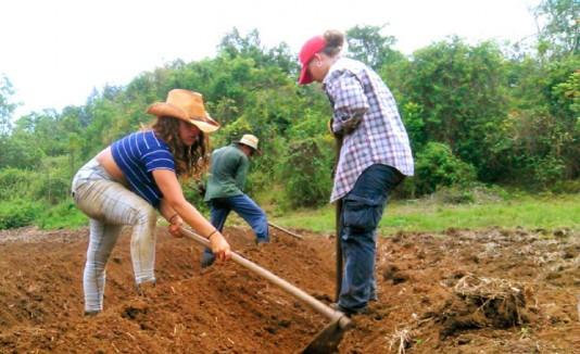 Proyecto Agroecológico El Josco Bravo