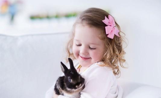 Mascota Conejo