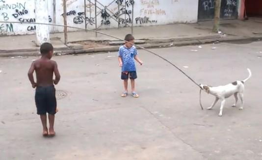 Perro ayuda a niños a brincar cuica