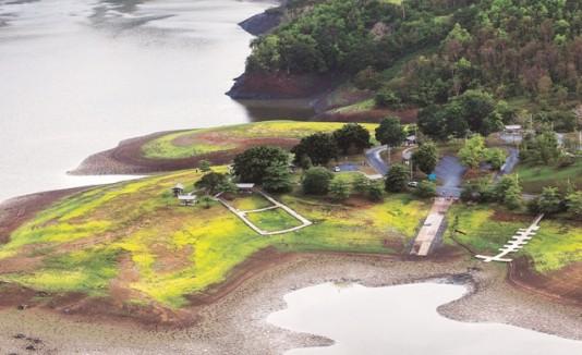 Refugio de Vida Silvestre en La Plata, Toa Alta.