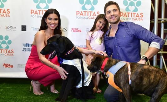 Roselyn Sánchez, Patitas por una causa, Adopción, Animales