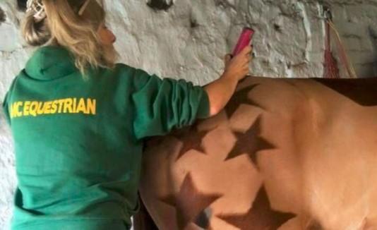 Mujer convierte caballos en obras de arte