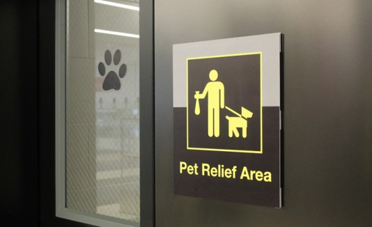 Baño para mascotas en JFK.