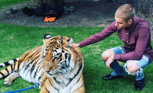PETA critica a Justin Bieber por posar junto a un tigre