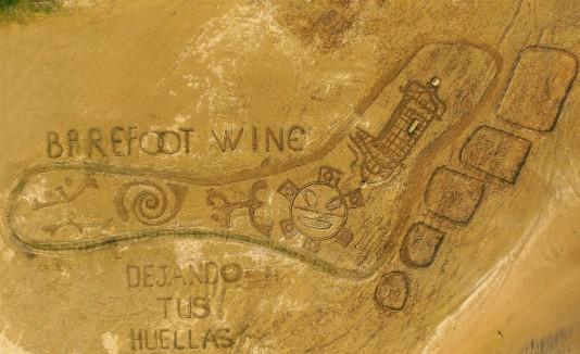 """Este sábado se realizará el World Beach Rescue Day como parte del compromiso de Barefoot Wine en mantener las playas limpias y """"Barefoot friendly""""."""