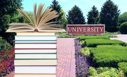 Universidad y libros