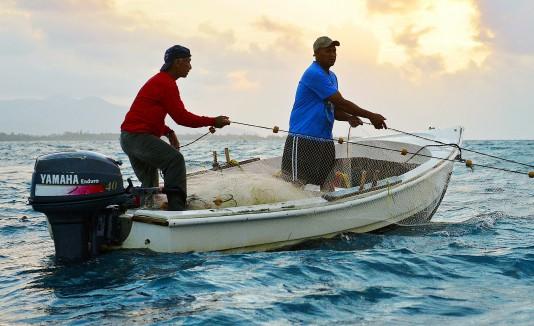 Afiliados a la Cooperativa de Pescadores y Desarrollo Comunitario de las Croabas de Fajardo piden que le quiten  la titularidad de los terrenos al municipio.