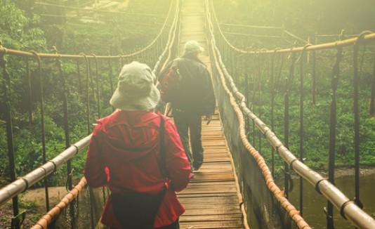 Caminando, puente, excursión