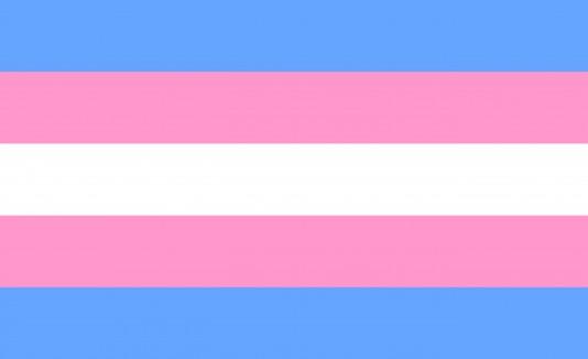 Bandera de la comunidad transgénero y transexual