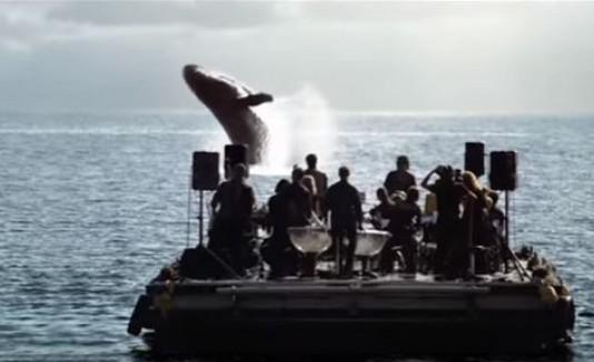Serenata a las ballenas