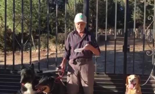 Anciano y sus perros