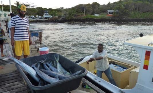 Pescadores Caribe