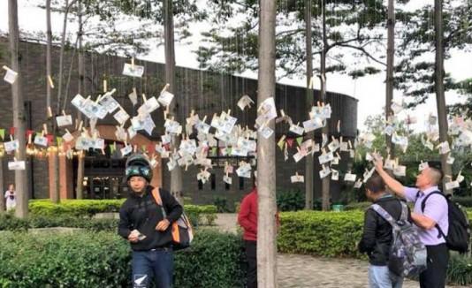 Árbol de billetes