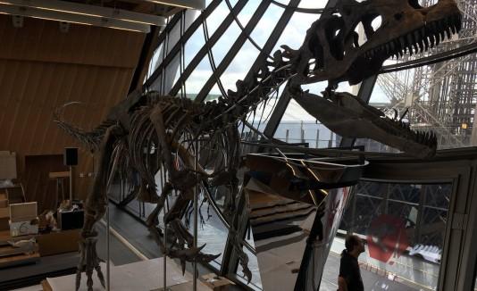 Dinosaurio París