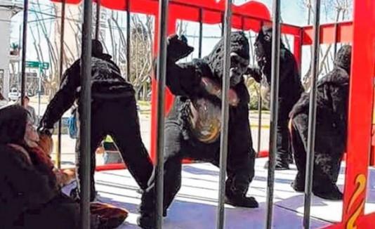 Disfraces de gorilas