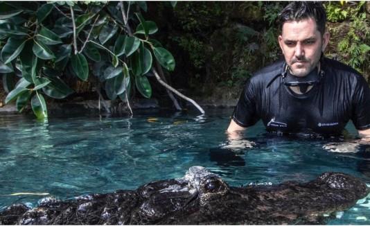 Buzo nadando con cocodrilo