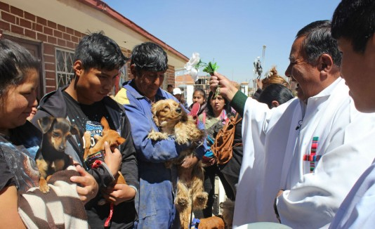 ceremonia para perros
