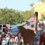 La feria tendrá música, talleres y la presentación del Circo Nacional.