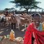 Noolkisaruni Tarakuai, de 38 años, tiene una dieta de 800 calorías, y es la tercera de las cuatro esposas de un jefe masái, en Masái, Kenia