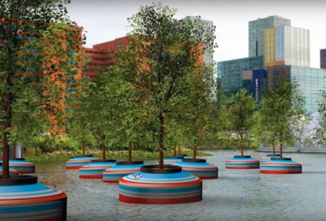 VÍDEO: Holanda planta un bosque flotante